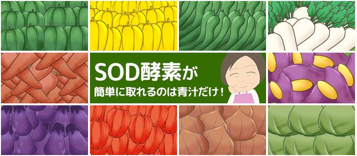 """【話題】明日葉に含まれる""""SOD酵素""""を簡単に摂れるのは青汁だけ!"""